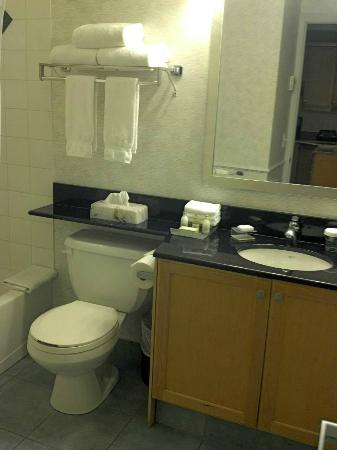 Homewood Suites Mont-Tremblant: washroom