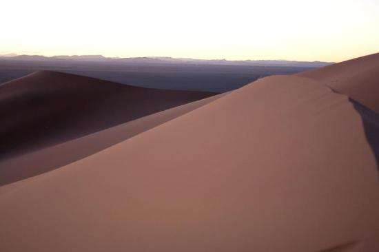 Kasbah Tamariste : Dunes