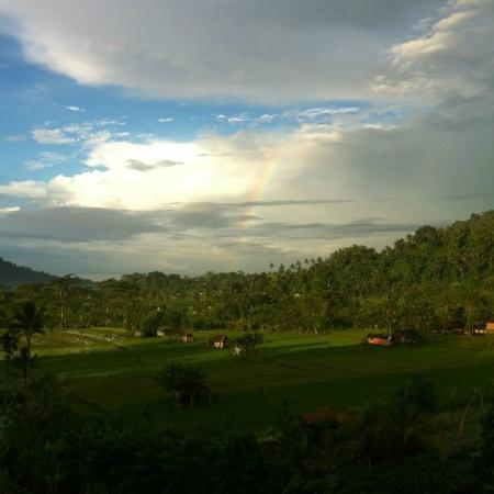 Surya Shanti Villa: Alba