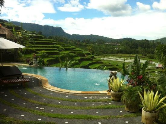 Surya Shanti Villa: Vista dalla piscina