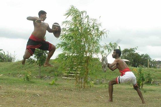 Parashurama Vallabhatta Kalari Academy