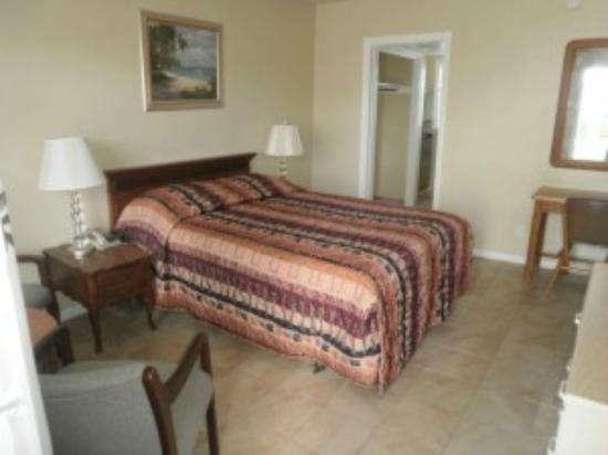Cheri Lyn Motel : Motel Room