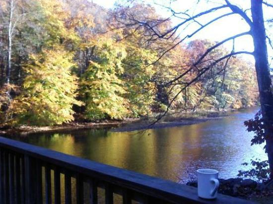 Cheat River Lodge and Riverside Cabins: Morning view from the back porch, next to hot tub