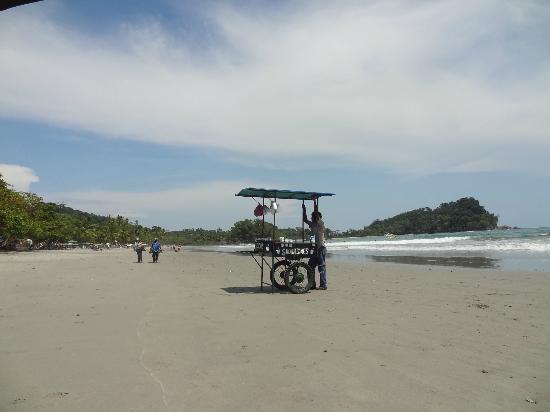 Gaia Hotel & Reserve: Beach