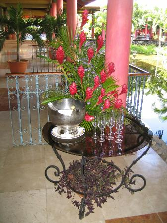 Paradisus Varadero Resort & Spa: Nice flowers