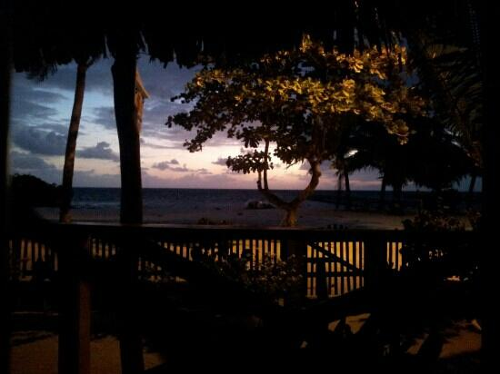 De Real Macaw: Sunrise from our room