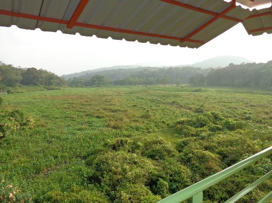 Kerala House: Great view, vue fantastique