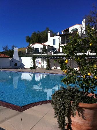 Ojai Valley Inn & Spa: Huge Pool