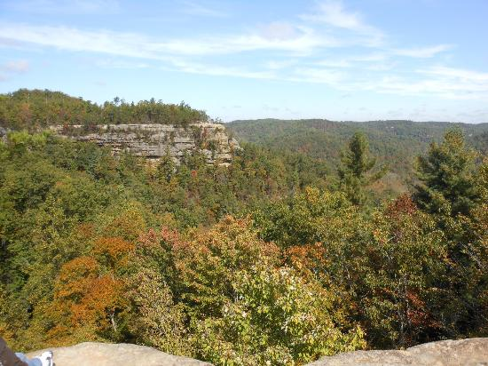 Natural Bridge State Resort Park: View from top of Natural Bridge