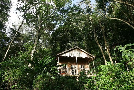 Treehouse cottage photos in Point Mulatre - Courtesy of media-cdn.tripadvisor.com