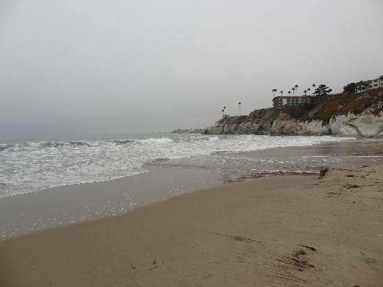 SeaCrest OceanFront Hotel: Strand direkt am Hotel