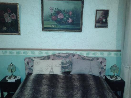 Cecilia's Guest House: Camera