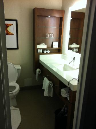 Hilton Mississauga/Meadowvale : Bathroom