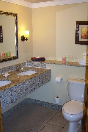 Sandals Grande St. Lucian Spa & Beach Resort: Spacious washroom