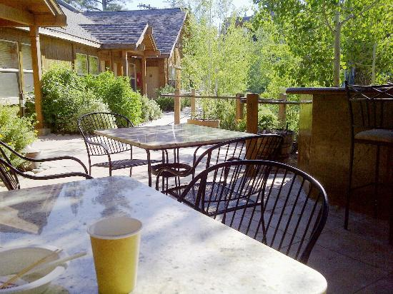 Chalet View Lodge: Common patio area....good for breakfast