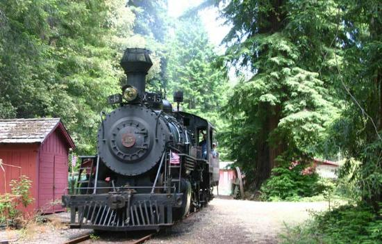 Best Western Orchard Inn: Skunk Train Tours