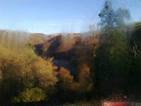The Hafod Hotel: view over the forest and falls