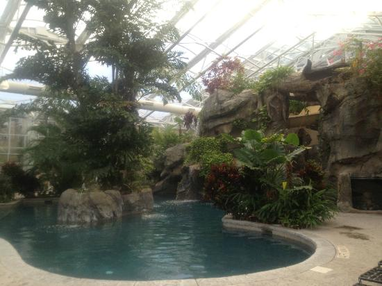 Grand Cascades Lodge: Pool at daytime