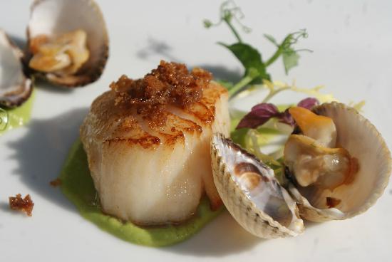 Visrestaurant De Tjotter: proef de zilte zee op uw bord