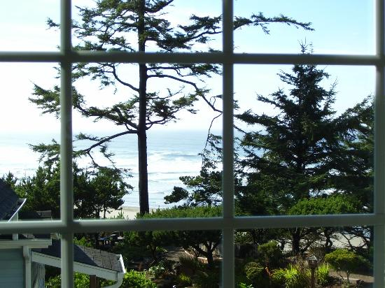 Ocean House Bed and Breakfast: View from Cottage