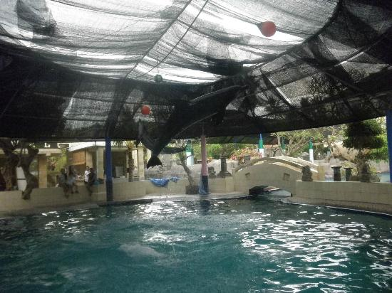 梅爾卡怡東度假村酒店照片