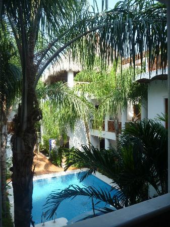 Hotelito Los Suenos: Lush vegetation