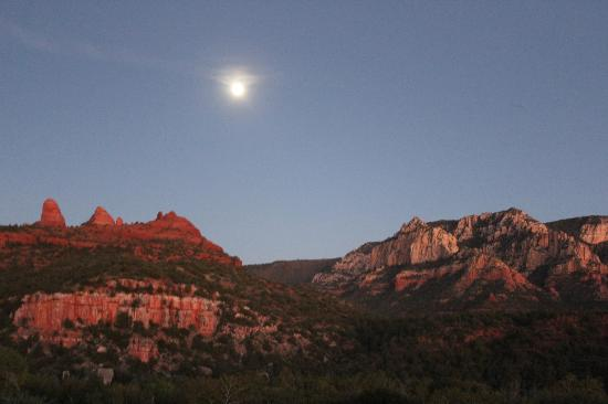 Best Western Plus Inn of Sedona: View of the room
