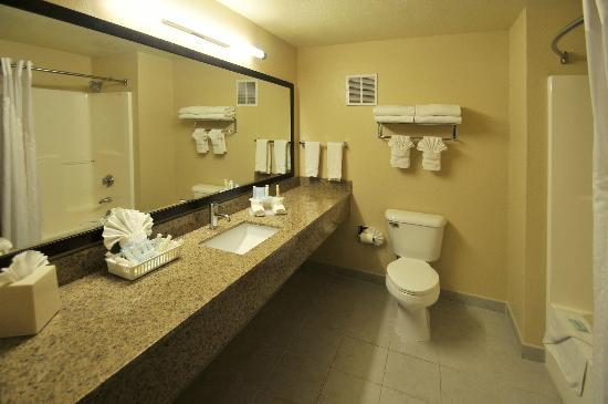 Holiday Inn Express Hotel & Suites Denver Littleton : Spactious Bathrooms