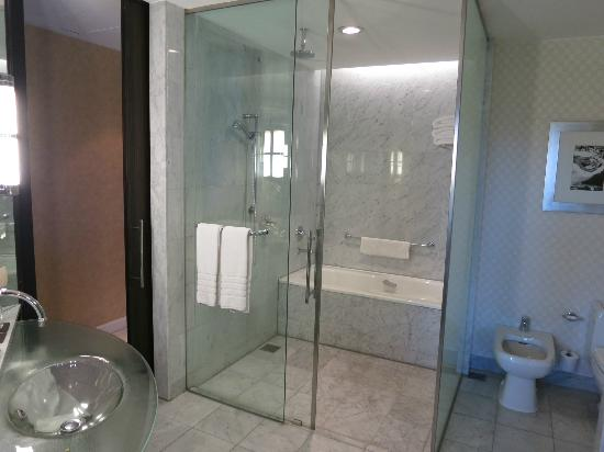 Park Hyatt Mendoza: nice washroom - large but showing its age