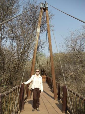 Sanctuary Makanyane Safari Lodge: bridge over watering hole / entrance to the lodge