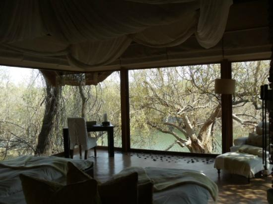 Sanctuary Makanyane Safari Lodge: View of river from our room