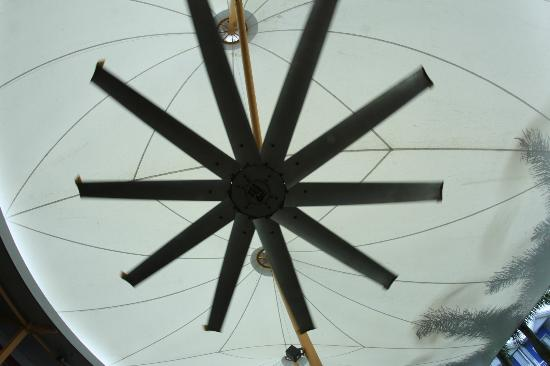 The Northern Greenhouse: The Big Fan