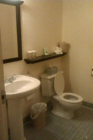 Le Victorin: Salle de bain - Chambre 267