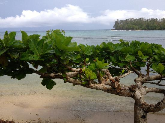 Drapers San : plage publique