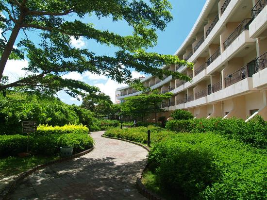 Howard Beach Resort Kenting: 林蔭小徑