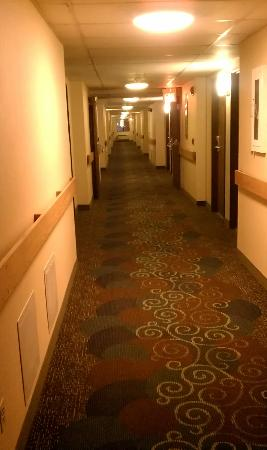 Motel 6 Elk Grove Village - O'Hare照片