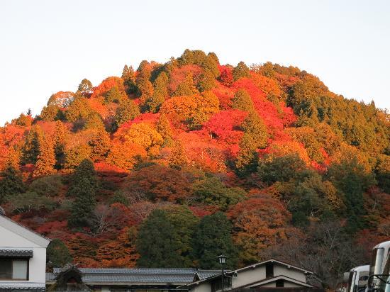Toyota, Japan: 結果的には駐車場から見た景色が一番良かった
