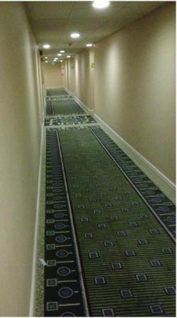 Holiday Inn San Jose - Silicon Valley: Hallway