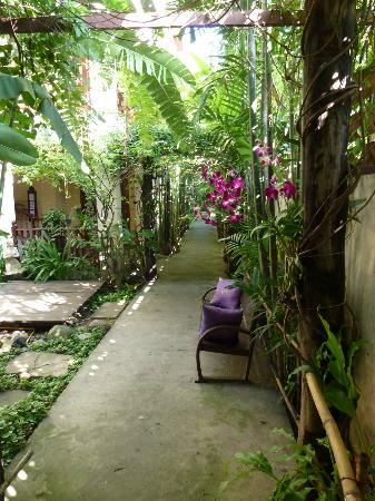 Shewe Wana Suite Resort: They alley way going towards the reception area