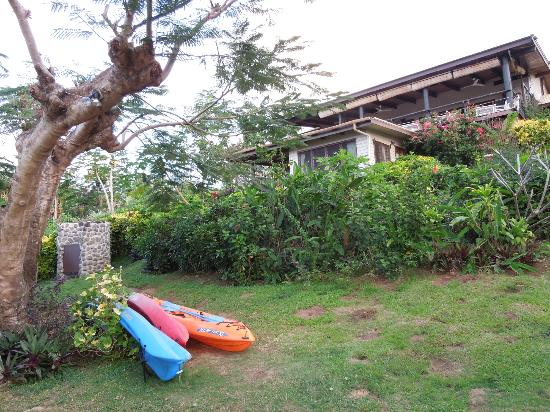 Coconut Grove Beachfront Cottages: View of the Papaya Bure, with the outdoor shower on the left and house kayaks in the foreground