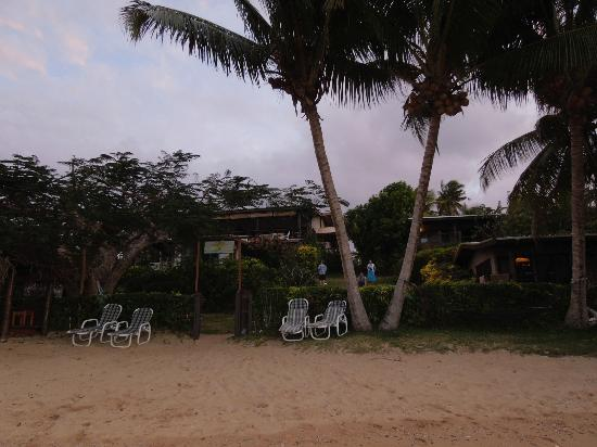 Coconut Grove Beachfront Cottages: View from the beach looping up at Coconut Grove