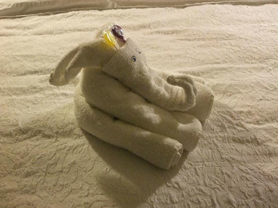 Hampton Inn Indianapolis - NE / Castleton: Our maid left cute towel creations each day!