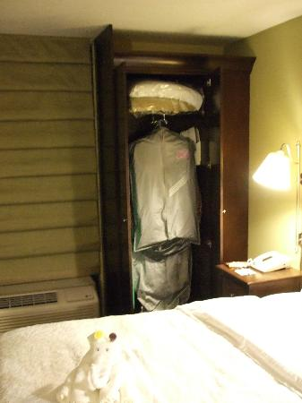 Hampton Inn Indianapolis - NE / Castleton: Closet open