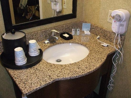 Hampton Inn Indianapolis - NE / Castleton: Small bathroom counter