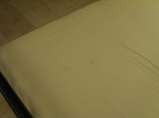 Apex International: Macchie sospette nelle lenzuola