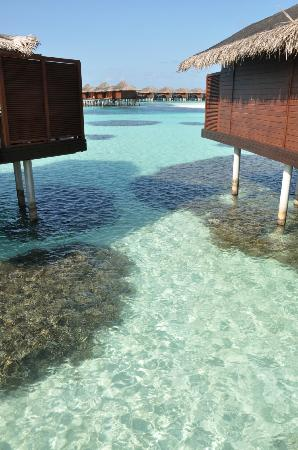 Anantara Veli Maldives Resort: View from corridor.
