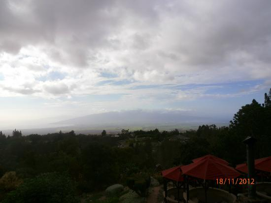 The Kula Lodge: View from Kula Restaurant