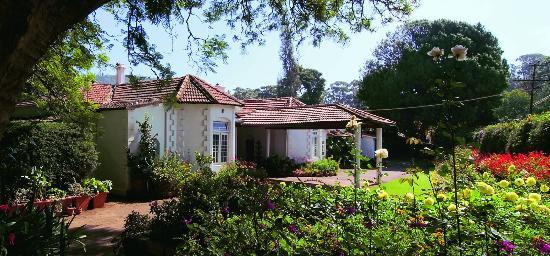 Neemrana's - Wallwood Garden