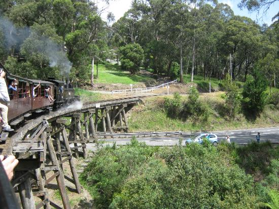Puffing Billy Demiryolu: Puffing Billy over the scenic bridge