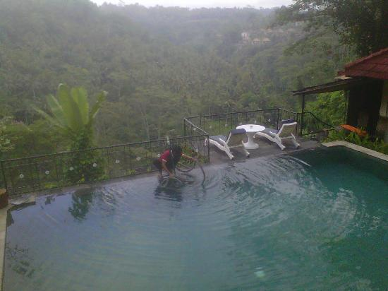 Puri Bunga Resort and Spa: pool